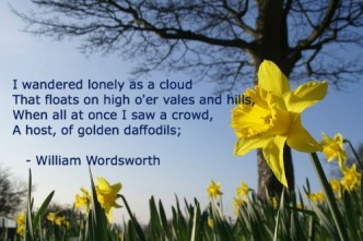 wordsworth-lonely-daffodils1-500x334